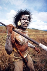 Warrior of the Dani tribe people from the Baliem Valley, West Papua,INDONESIA